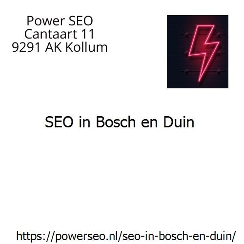 SEO in Bosch en Duin